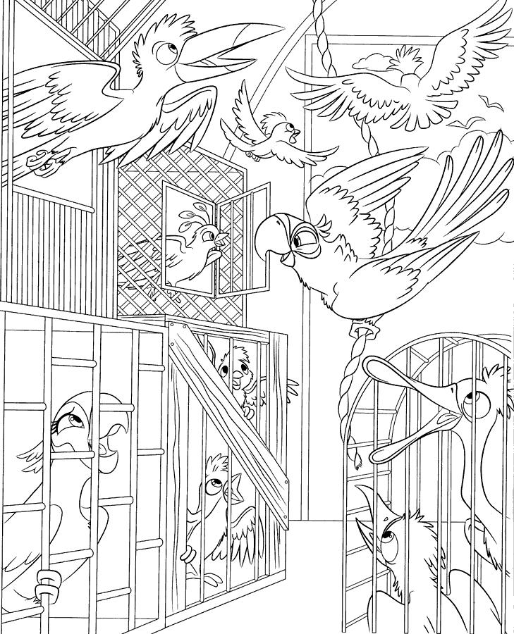 Більше розмальовки розмальовки рио